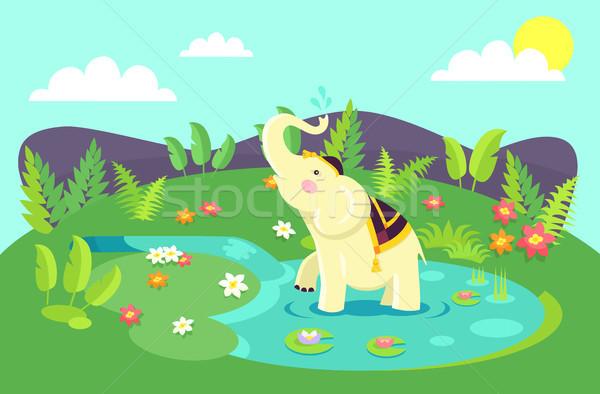 бежевый слон одежду чистой лужа Сток-фото © robuart
