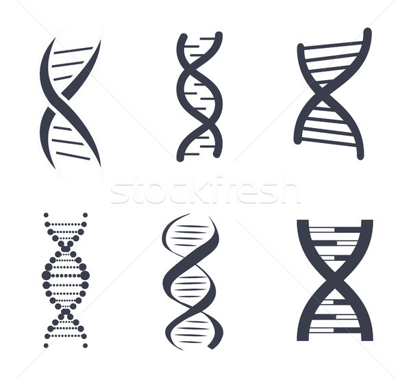 DNA Silhouettes Set Poster Vector Illustration Stock photo © robuart