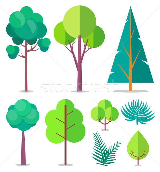 Stok fotoğraf: şablon · ağaçlar · farklı · vektör · dizayn