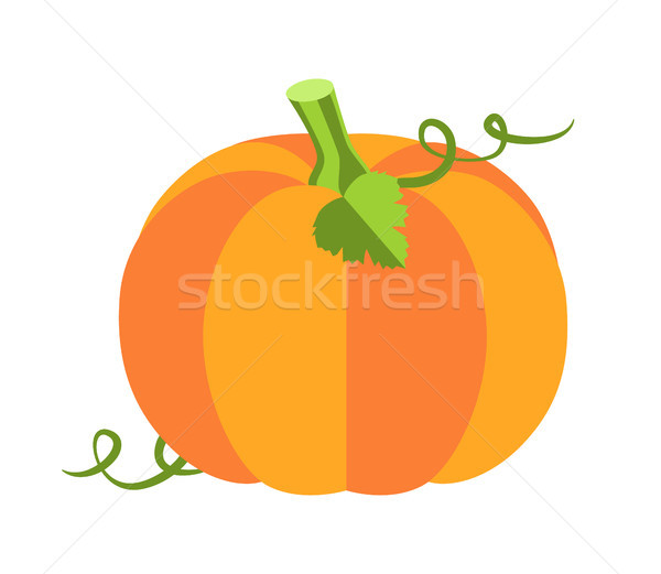 Pumpkin with Leaves Poster Vector Illustration Stock photo © robuart
