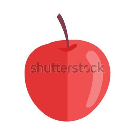 リンゴ スタイル デザイン ベクトル フルーツ 実例 ストックフォト © robuart