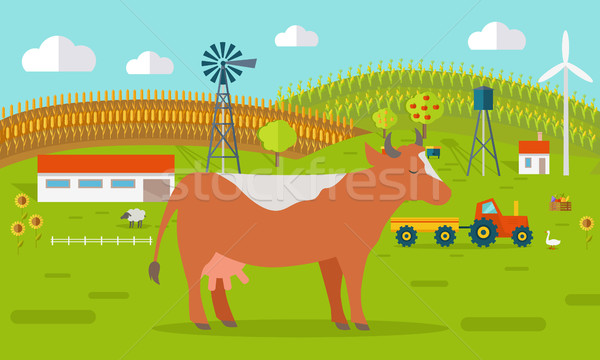 Cow on Farmyard Concept Illustration.   Stock photo © robuart