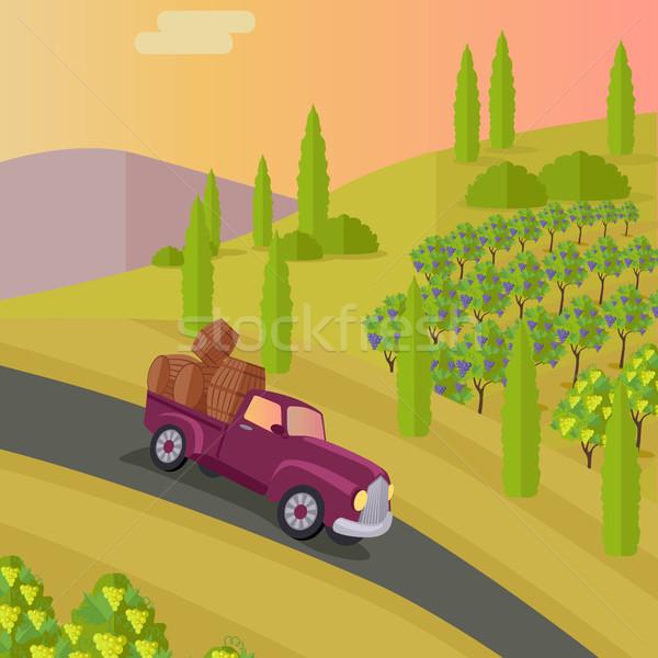Brano uva vino produzione vigneto piantagione Foto d'archivio © robuart
