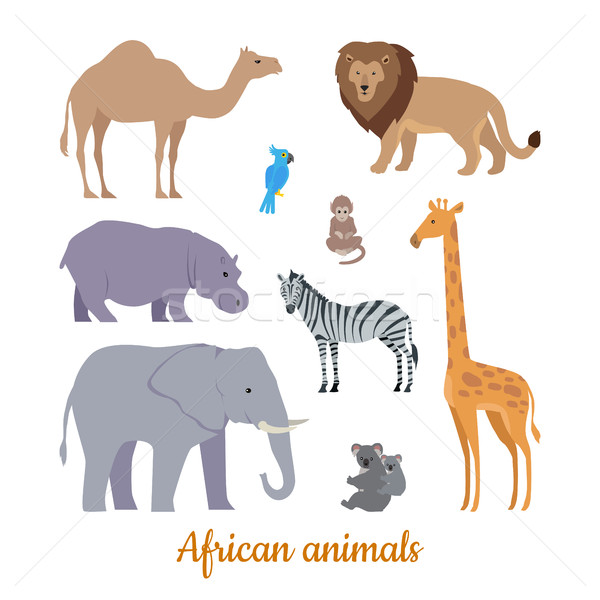 Set of African Animals Flat Design Illustrations  Stock photo © robuart