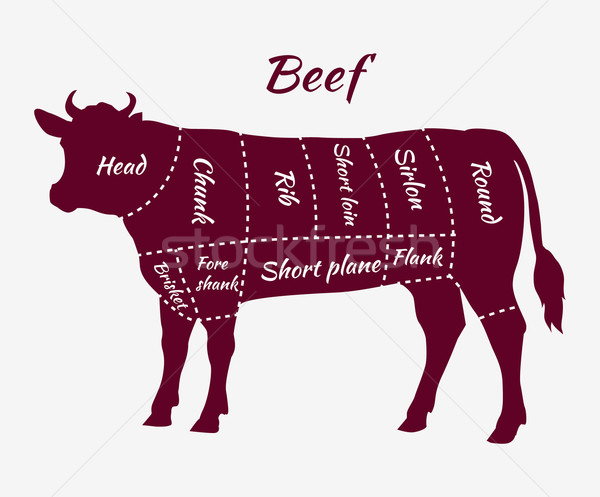 Scheme of Beef Cuts for Steak and Roast Stock photo © robuart