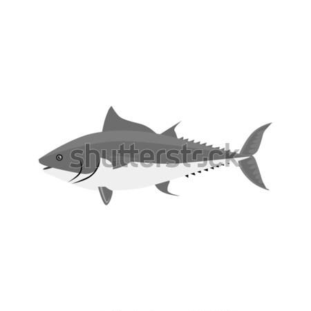 Hal ikon terv izolált tenger állateledel Stock fotó © robuart
