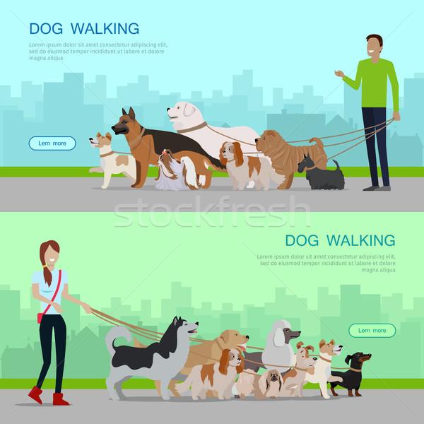 Professional Dog Walking Service Banners Set. Stock photo © robuart