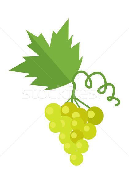 Stock photo: Bunch of White Wine Grape
