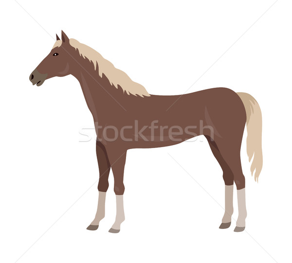 Sorrel Horse Vector Illustration in Flat Design Stock photo © robuart