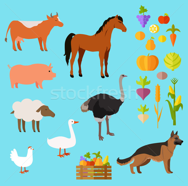Domestic Animals Set near Fruit and Vegetable Stock photo © robuart