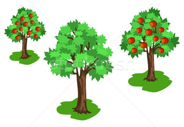 Apple Tree with Green Leaves and Red Fruits Set Stock photo © robuart