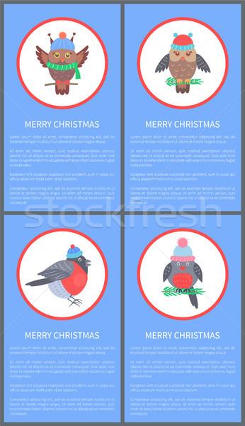 Wesoły christmas 60s gratulacja pocztówkę Sowa Zdjęcia stock © robuart