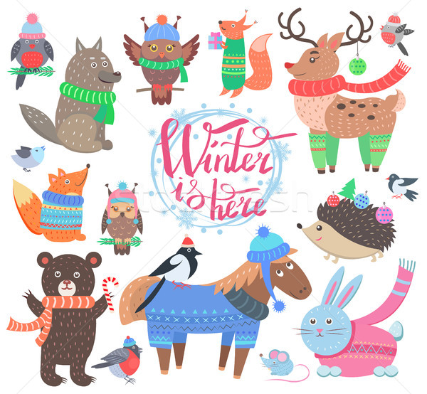 Winter is Here Poster Animals Vector Illustration Stock photo © robuart