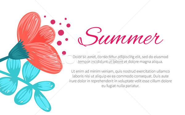 Summer Poster with Flower Vector Illustration Stock photo © robuart