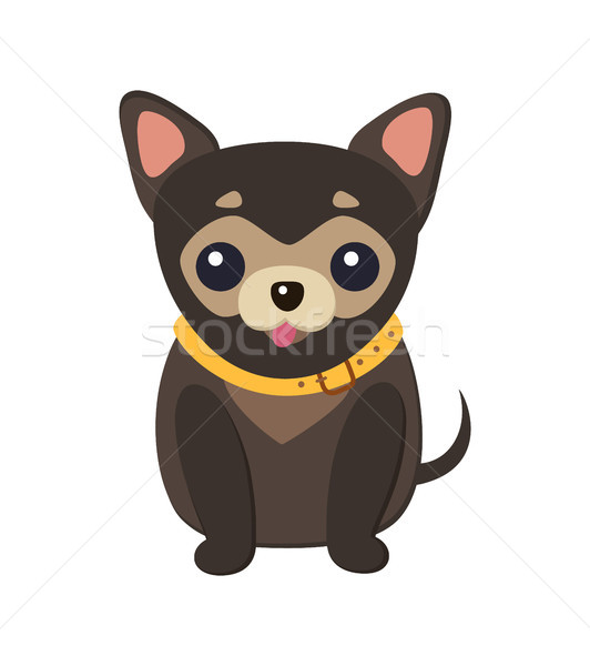 Chihuahua Dog Picture Poster Vector Illustration Stock photo © robuart