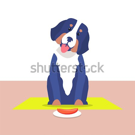 Cute Dog with Long Ears and White Collar Vector Stock photo © robuart