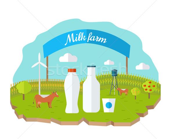 Foto stock: Orgânico · leite · fazenda · teia · bandeira · vetor