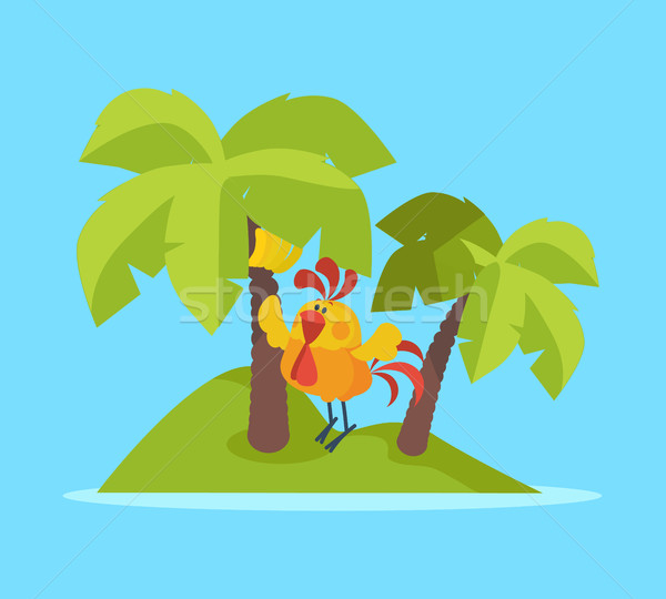 Rooster Bird on Tropic Island. Cock at Rest Vector Stock photo © robuart