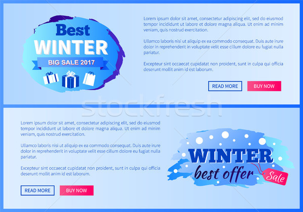 Best Winter Sale 2017 Vector Landing Page Posters Stock photo © robuart