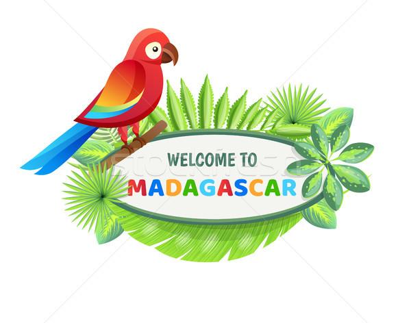 Welkom Madagascar poster tekst monster ingesteld Stockfoto © robuart