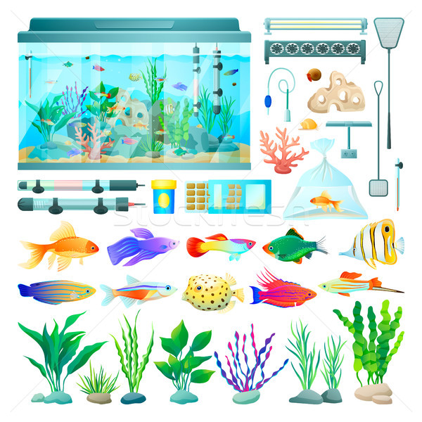 Stok fotoğraf: Akvaryum · balık · ayarlamak · simgeler · bitkiler