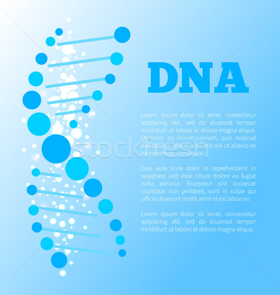 DNA Poster of Blue Color, Vector Illustration Stock photo © robuart