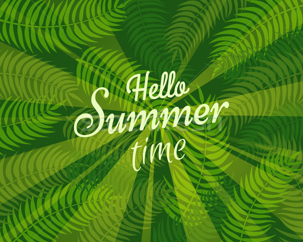 Hello Summer Time Slogan on Background with Leaves Stock photo © robuart