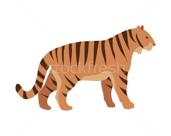 Stock photo: Red Tiger. Cartoon Vector Isolated Mamal Animal
