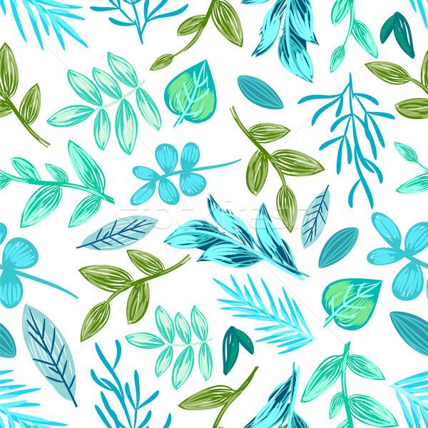 Stockfoto: Planten · potlood · witte · variëteit