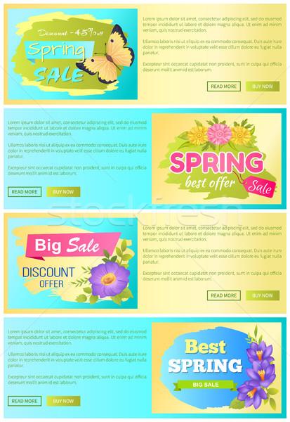 Spring Sale Discount Offer Set Vector Illustration Stock photo © robuart