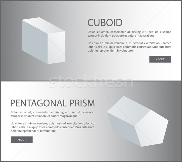 Cuboid and Pentagonal Prism Vector 3D Shaped Web Stock photo © robuart