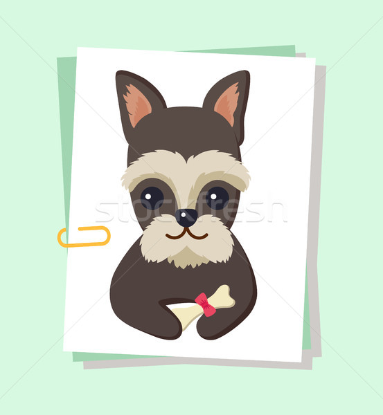 Dog Poster and Pet with Bone Vector Illustration Stock photo © robuart
