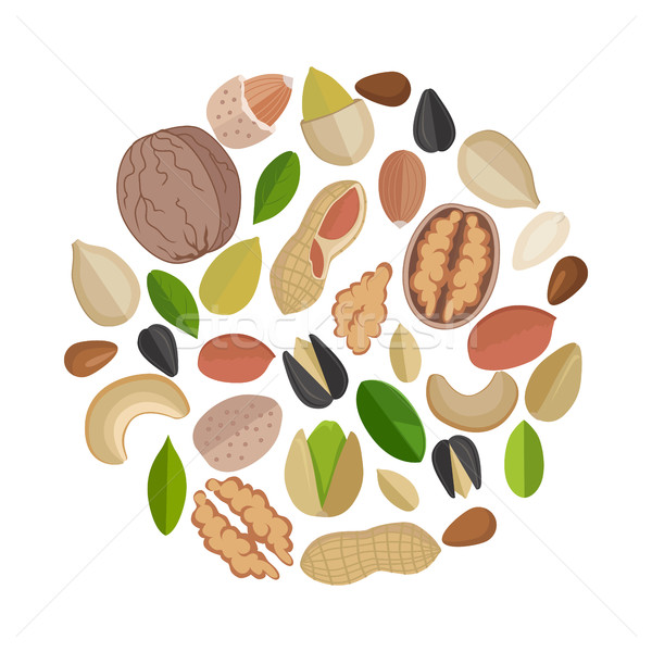 Nuts Composed in Circle Shape. Stock photo © robuart