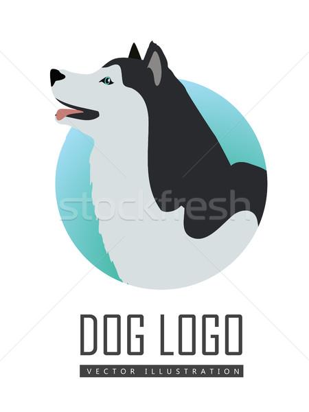 собака логотип вектора Husky изолированный Сток-фото © robuart