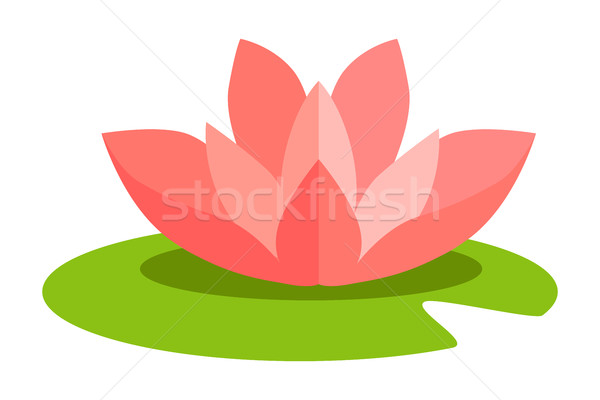 Lotus Flower Isolated in Flat Design on White Stock photo © robuart
