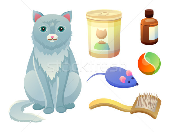 Set for Taking Care about Feline. Food for Cat Stock photo © robuart
