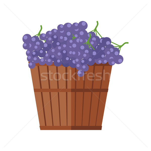 Wooden Barrel with Bunches of Red Wine Grape Stock photo © robuart