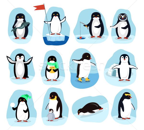 Codziennie plakaty cartoon zestaw połowów Zdjęcia stock © robuart
