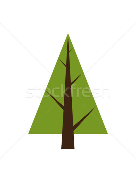 Abstract Tree, Spruce Plant Icon with Brown Trunk Stock photo © robuart