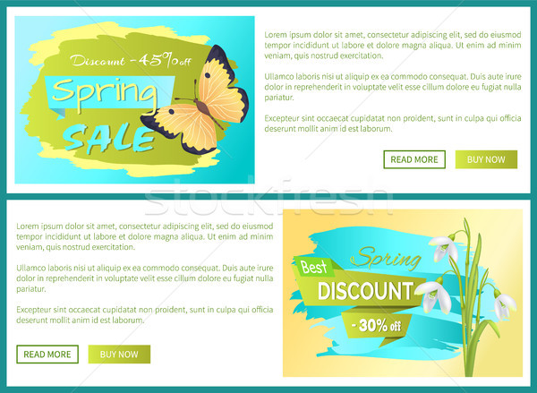 Spring Sale Poster Discount Color Butterflies Web Stock photo © robuart