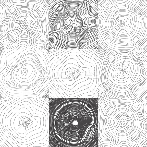 Collection of Backgrounds Tree Rings Stock photo © robuart