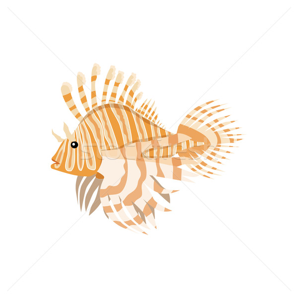 Tropical Fish Lionfish Pterois Volitans Stock photo © robuart