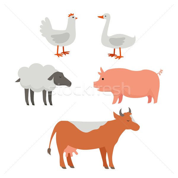 Set of Domestic Animals Flat Design Vector. Stock photo © robuart