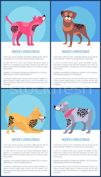 Alegre Navidad carteles establecer juguetón perros Foto stock © robuart