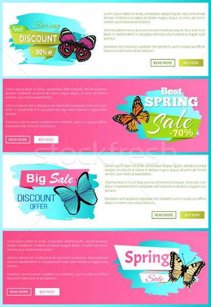 En İyi seçim bahar satış etiketler posterler kelebek Stok fotoğraf © robuart