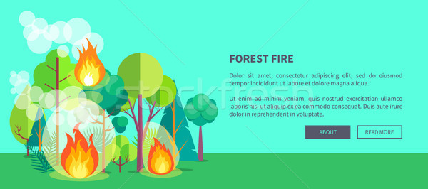 Poster Depicting Raging Forest Fire Stock photo © robuart
