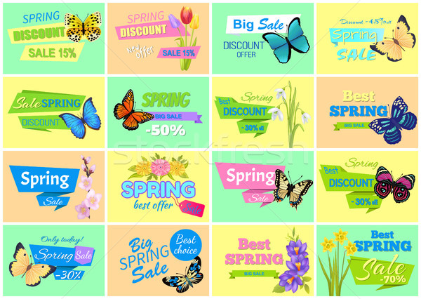 Spring Discount Sale Set, Vector Illustration Stock photo © robuart