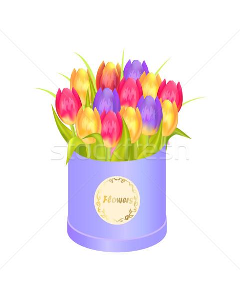 Kwiaty owalny dekoracyjny polu luksusowe tulipany Zdjęcia stock © robuart