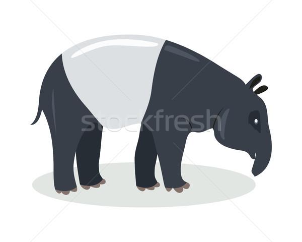 Cartoon icon ontwerp cute vector Stockfoto © robuart