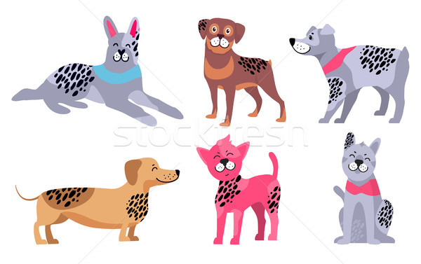 Animal Symbols of 2018 Year by Chinese Calendar Stock photo © robuart